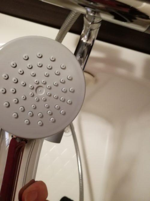 シャワーヘッド裏