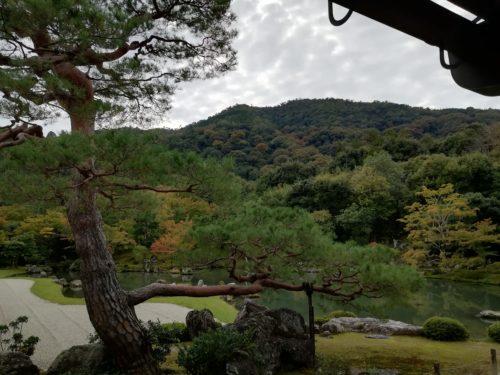 天龍寺から見た嵐山の風景