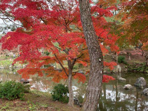 ひょうたん池の畔2