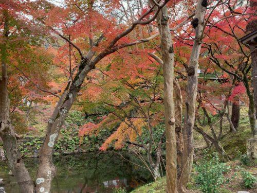 ひょうたん池の畔