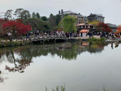 円山公園のひょうたん池