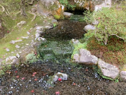 銀閣寺のお茶の井庭園2