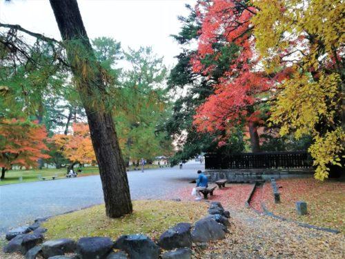 京都御苑のベンチ