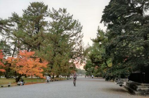 京都御苑4
