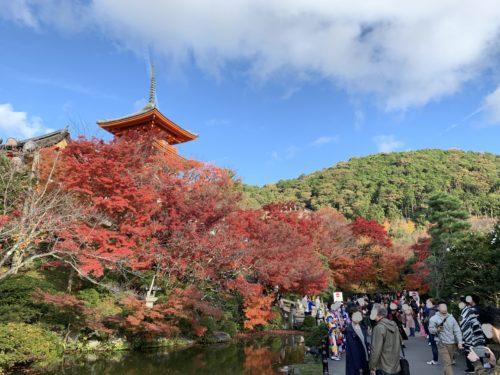 3清水寺の紅葉