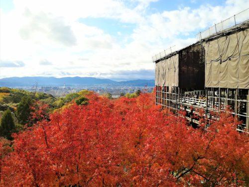 紅葉の清水寺1