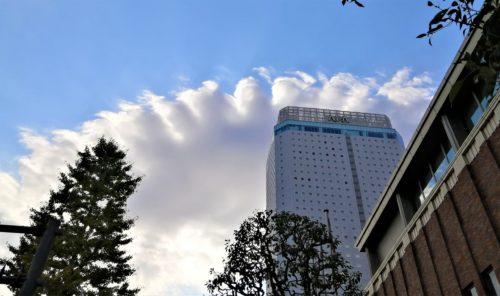アパ横浜の餃子雲