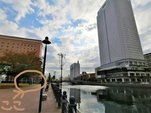 横浜の不思議なポコポコの正体
