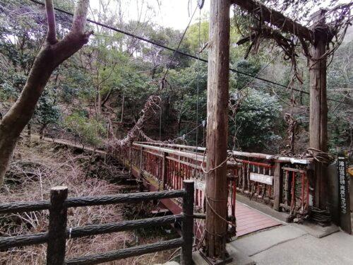 猿のかずら橋1