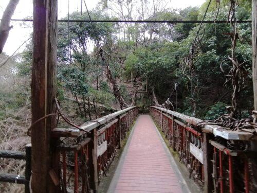 猿のかずら橋2
