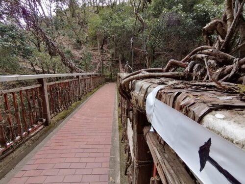 猿のかずら橋4