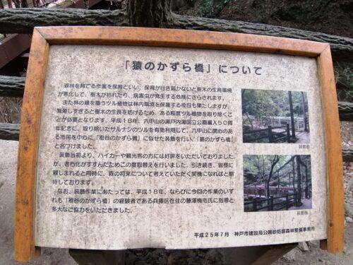 猿のかずら橋5