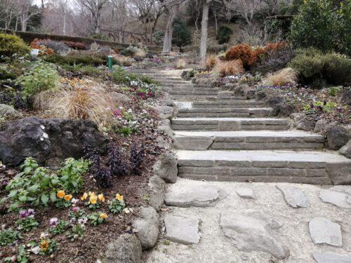 ハーブ園四季の庭3