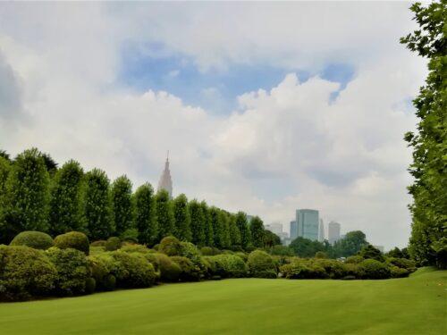 新宿御苑並木2