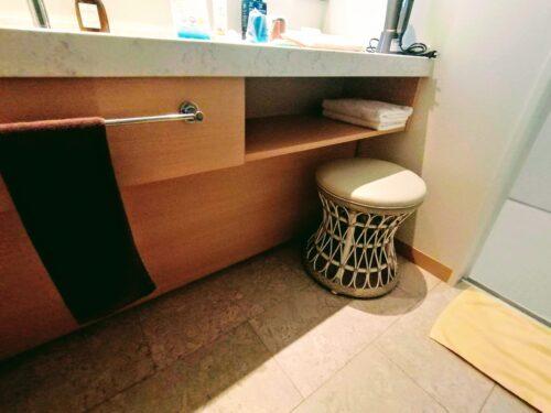 洗面所の備品3